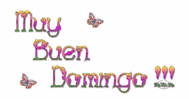Feliz Domingo. - Página 12 075713c5c70f0998deb09835273f2c53