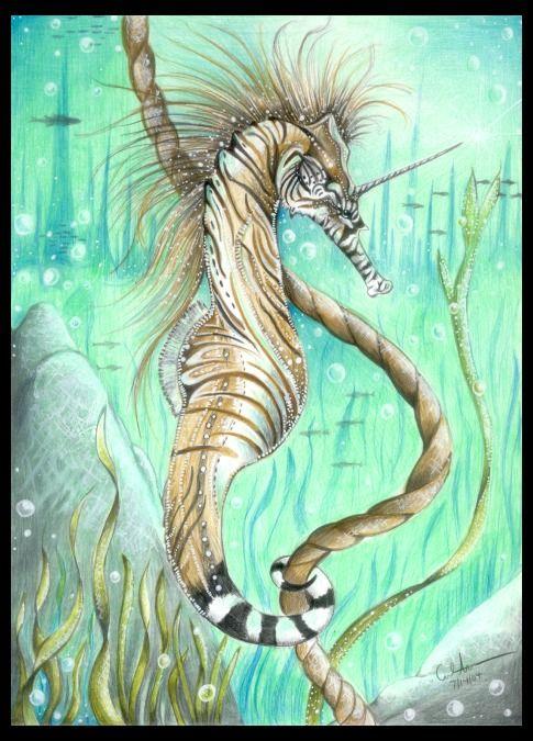 Baby Zebra Drawing