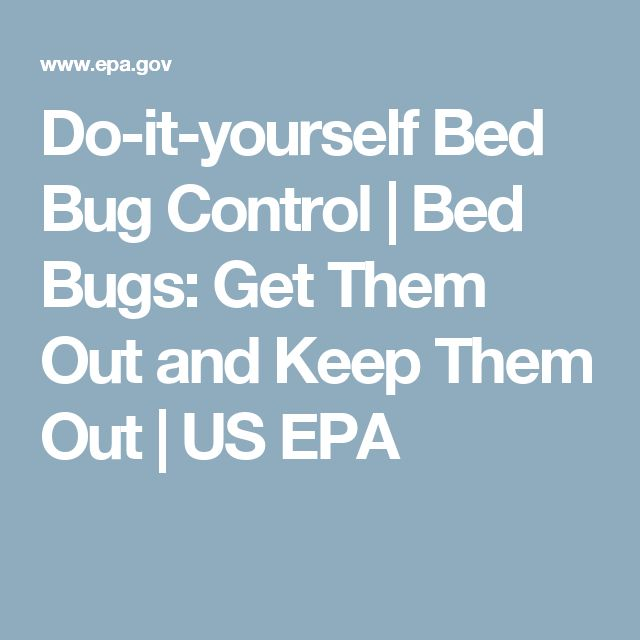 1000 Ideas About Bed Bugs On Pinterest Treatment Dust Mites And Bug Spray