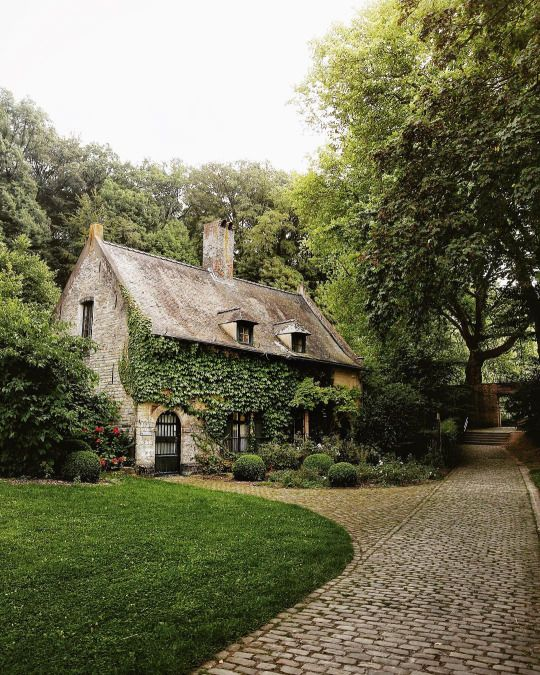 Avec M ivy covered stone cottage driveway