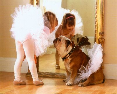 Affiche bouledogue anglais en danseuse avec petite fille étoile / English bulldog in dancing dress
