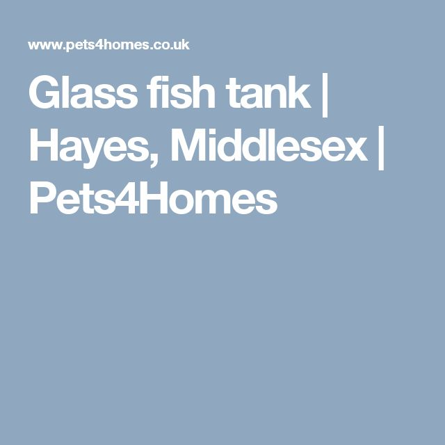 Glass fish tank | Hayes, Middlesex | Pets4Homes