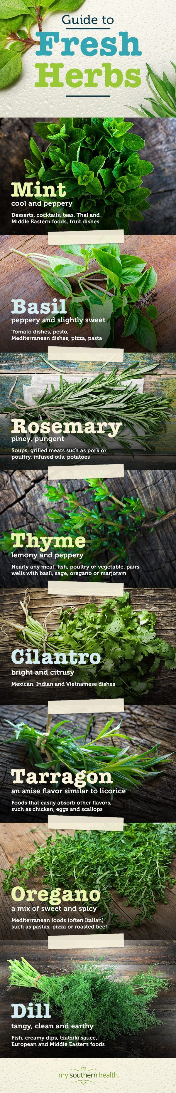 Transform your favorite recipes by adding fresh herbs. Learn about herbs and explore ideas for using them at My Southern Health.
