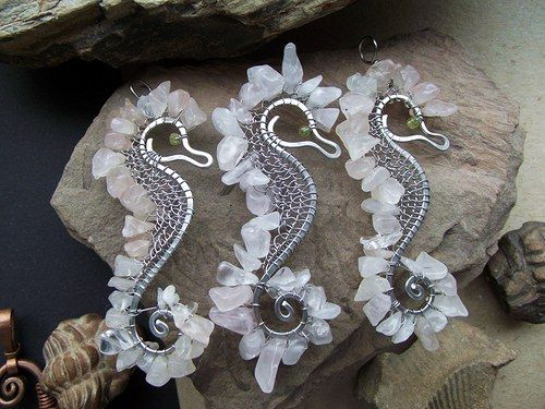 Růženínový mořský koník - sea horses