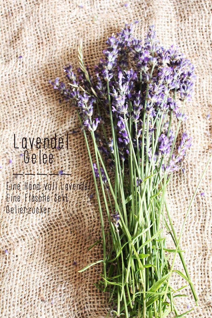 Lavendel Gelee {oder alles Gute kommt aus dem Garten}