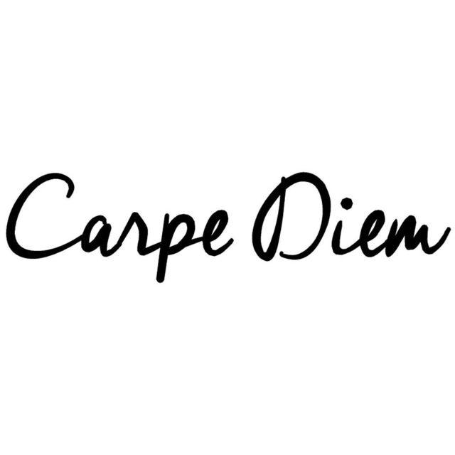 20.3*5 CM Moda Texto DO CARPE DIEM Porta Estilo Do Carro Adesivos de Carro Decalques de Vinil Acessórios Preto/Prata C9-0316