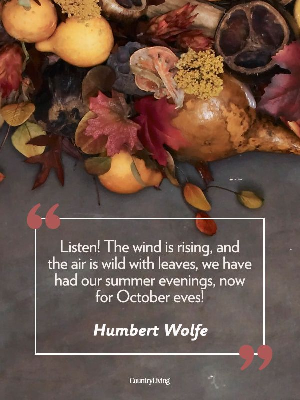 "Fall quotes: ""Listen! The wind is rising, and the air is wild with leaves, we have had our summer evenings, now for October eves!"" -Humbert Wolfe"