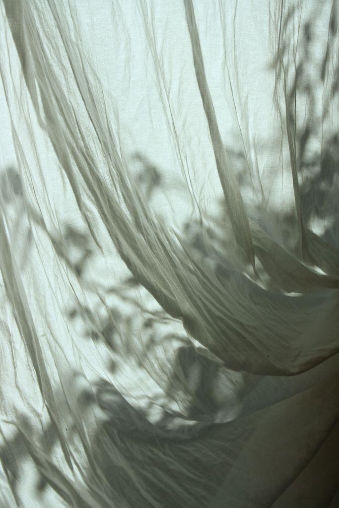 fabric curtain folds bright winter sun plant shadows love that winter sun!