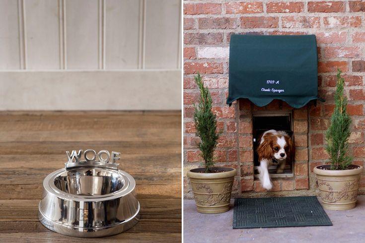 The Perfect Pet Friendly Home   Pet Storage & Organization   Pretty Fluffy