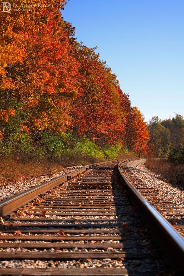 4042 Best Autumn Images On Pinterest Autumn Leaves