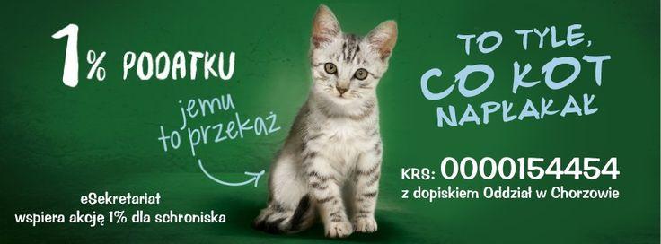 Zachęcamy Państwa do oddania swojego 1% dla Schroniska dla Zwierząt w Chorzowie. http://www.chorzow.schronisko.com/ #1procent #pomagamy