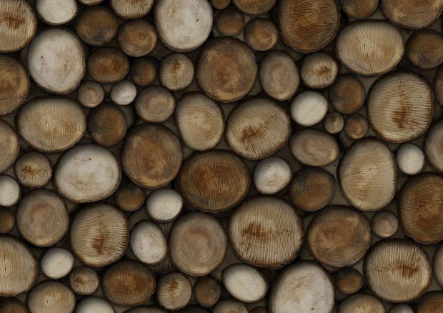 Wildwood: Raw collection by Glamora | Industrial Wallcovering & Carta da Parati | Interior design
