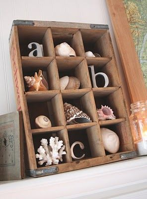 Great way to store your collected shells.