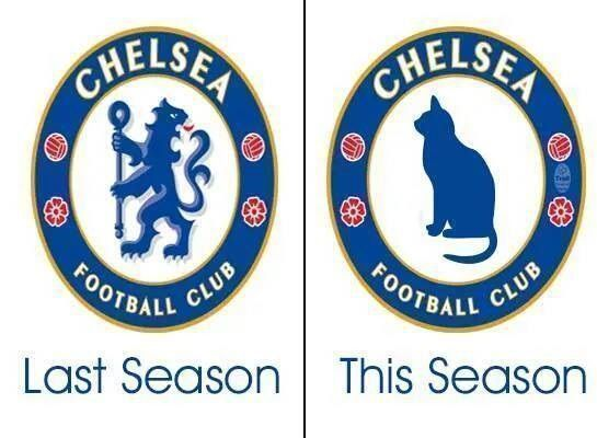 The Blues powinni zmienić herb z lwa na kota • Chelsea Londyn w tym sezonie bez agresji i polotu • Wejdź i zobacz śmieszne zdjęcie >> #chelsea #football #soccer #sports #pilkanozna