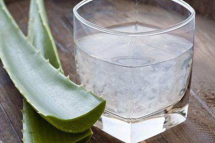 Aloe vera recepty