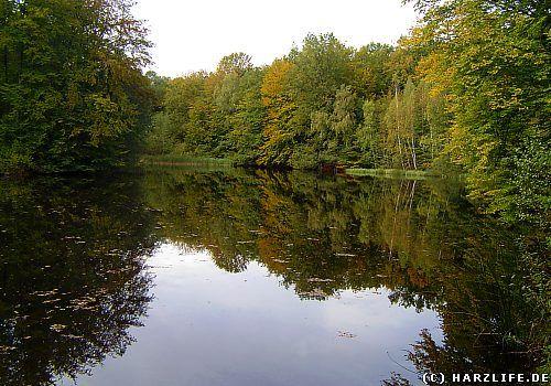 """Blick auf den Eck-Teich. Der Eck-Teich ist einer der vielen alten Fischteiche um Walkenried. Er liegt westlich dieses Ortes im Gipskarstgebiet des Südharzes sowie im Naturschutzgebiet """"Priorteich-Sachsenstein"""". Im Mittelalter wurde er von den Mönchen des Zisterzienserklosters angelegt. Das malerische Gewässer besitzt eine Länge von rund 180 und eine Breite von maximal 80 Meter. Der Eck-Teich wird von einem dichten Mischwald umgeben. Sein Ufer säumen mehrere Parkbänke, so daß Sie hier sitzend…"""
