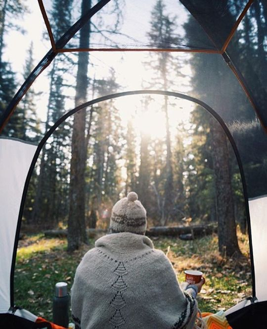 The best view is waking up in the woods in the morning when everything is still peaceful.