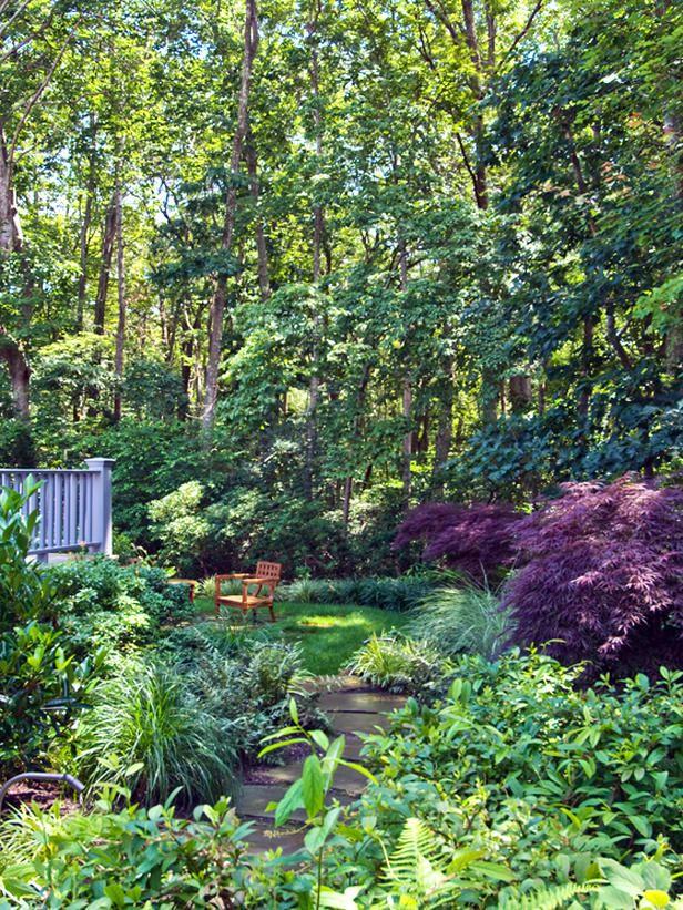 17 best Landscape shrubs for zone 7 images on Pinterest ...