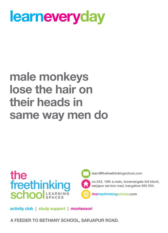 Way men do learn everyday pinterest monkey hair and the o jays