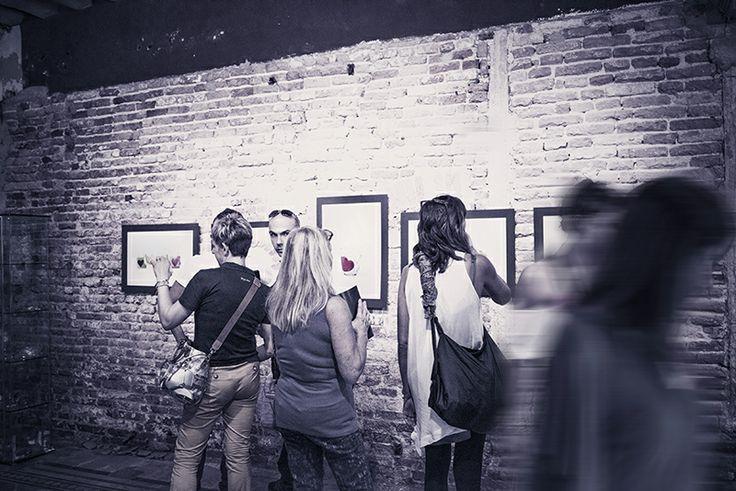 Esposizione fotografica Venezia 2013