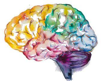 Gehirn Aquarell Malerei  Aquarell Gehirn drucken Heilkunst