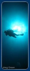 Snorkeling diving tours