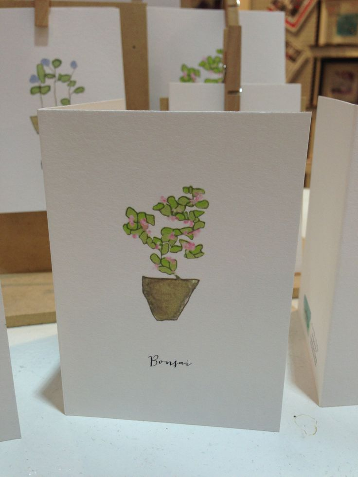 'Bonsai' from the Organics Range