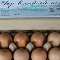With a rating of 9.2 out of 10, #TopHundredAcres chicken eggs are of excellent quality. Purchasing this brand ensures support of a highly ethical and sustainable farming system.