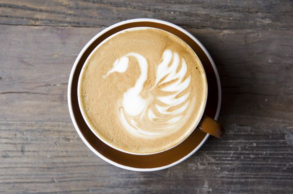 Early Bird Toronto latte queen west coffee shop favourite