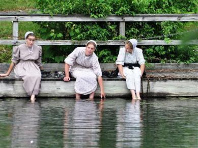 Delightful Amish Proverbs