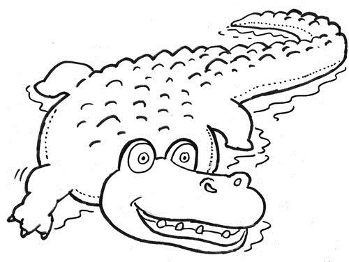 24 best coccodrillo images on Pinterest Colouring pages