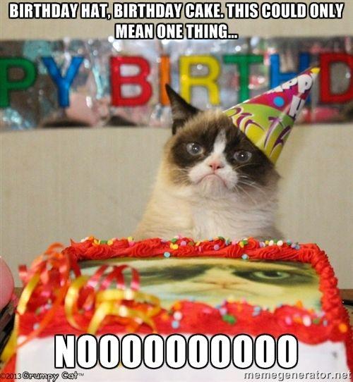 Grumpy Cat Birthday hat - Birthday hat, birthday cake. this could only mean one thing... NOOOOOOOOOO