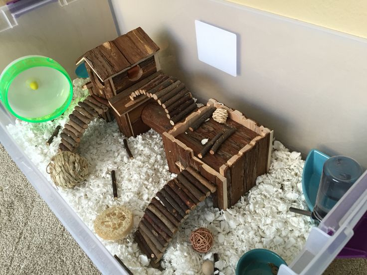 1000 ideas about hamster cages on pinterest hamsters for Hamster bin cage tutorial