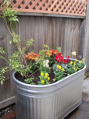 Nice gardening blog