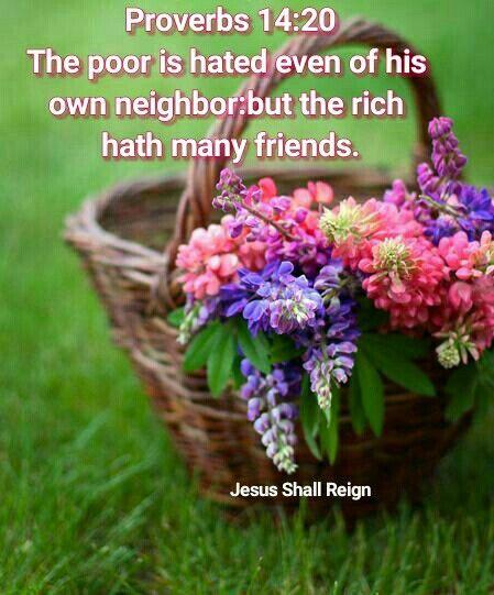 Proverbs 14:20
