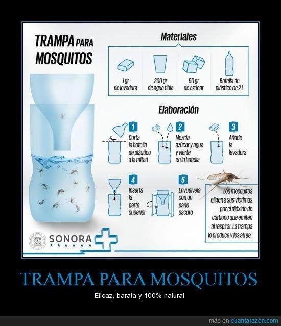 TRAMPA PARA MOSQUITOS - Eficaz, barata y 100% natural                                                                                                                                                                                 Más