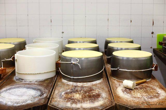 Comment est fabriqué le Parmigiano Reggiano ? Souvenirs d'un beau voyage