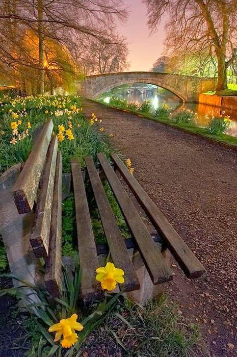 Bridge over River Cam within King's College at Cambridge University, Spring Evening, Cambridge, England