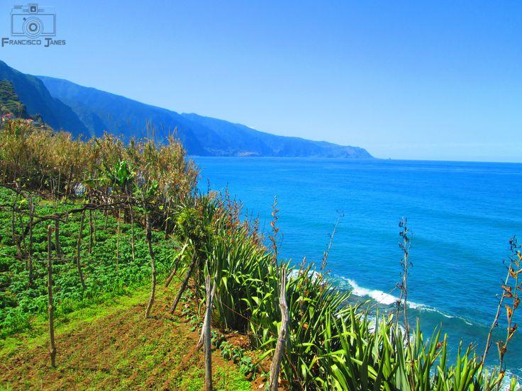 Madeira Island - null