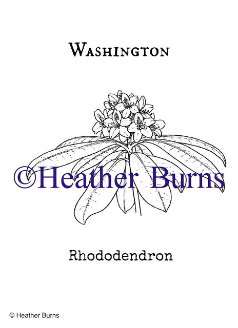 washington apples coloring pages - photo#47