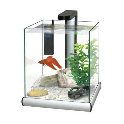 Die besten 25+ Aquarium LED Ideen auf Pinterest Aquarium LED - küchen led leiste