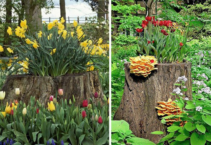 15 Ideas How To Recycle Tree Stumps And Make Gorgeous Garden Decorations - Top Inspirations