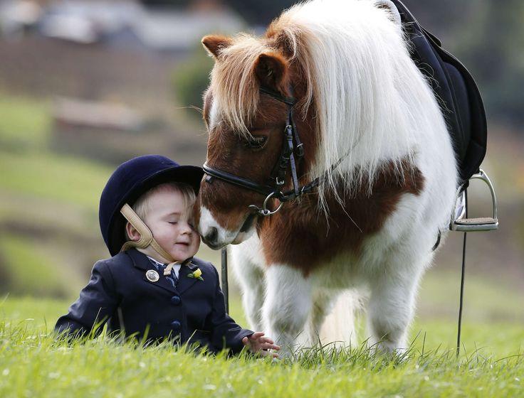 Un piccolo #pony per un piccolo uomo...! Ha solo 16 mesi Ethan, ma insieme al suo destriero di nome Buttons è già un gigante! Saluti da Melbourne, Australia  ©OLYCOM