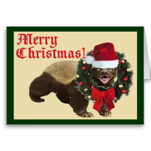 76 Best Honey Badgers Lol Images On Pinterest