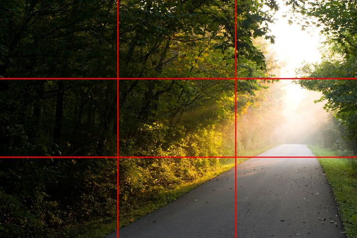 The rule of thirds is a photography tip that has been around for ages. When composing your photograph imagine four lines, two lying horizont...