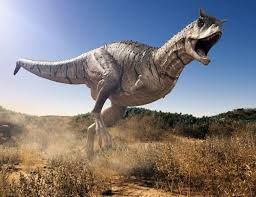 Carnotaurus, was a genus of large theropod dinosaur that lived in South America during the Late Cretaceous period, between about 72 and 69.9 million years ago. The only species is Carnotaurus sastrei.
