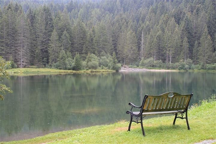 Bench at the Roe Deers Lake, val di sole (TN) Italy.