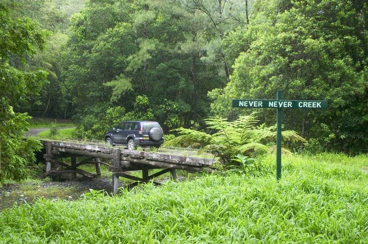 Gleniffer Gorge, Dorrigo National Park