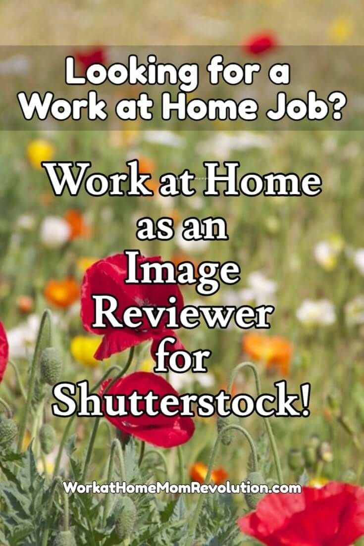 1463 best Photography Jobs images on Pinterest
