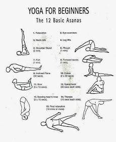 12 basic asanas for beginner  hatha yoga for beginners